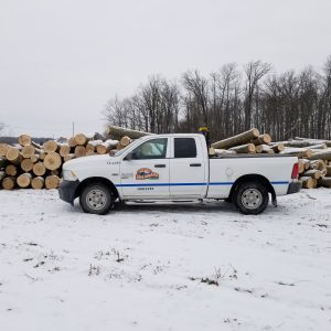 Forestry truck in front of a pile of logs